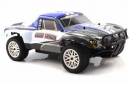 Himoto Corr Truck (1:10)